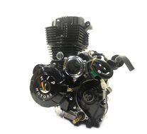 Двигатель в сборе 164 FML TRITON