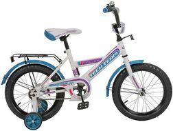Велосипед TECH TEAM 138