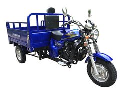 Трицикл ZIP MOTORS Triton 200 (синий)